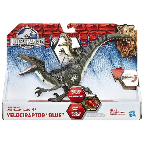 해즈브로 Hasbro Jurassic World Velociraptor Blue Figure